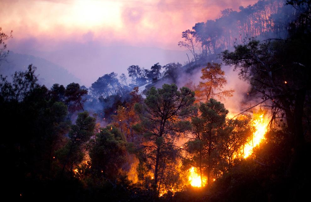 Превратности финансового пожаротушения, или поздно пить боржоми…